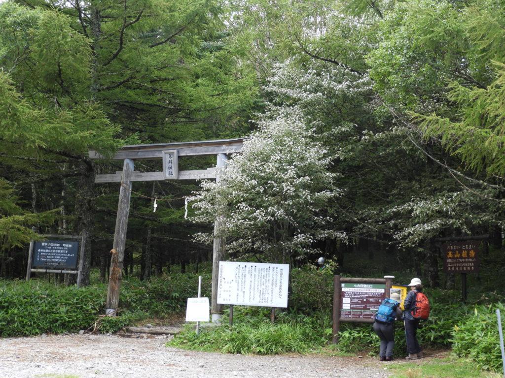 七合目登山口
